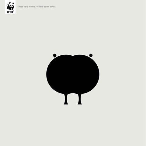 World Wild Life Fund